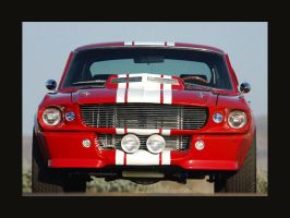 GT 500 by Ford by puddlz