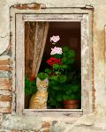 The Little Tuscan Tiger by bnolin