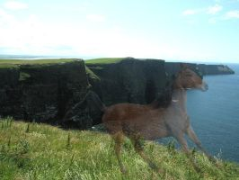 The Ghost of Moher by 14658