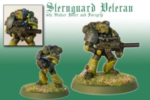 Sternguard Veteran with Stalker-Bolter by Pip-Faz