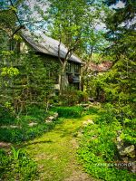 House in the fairy garden by confucius-zero