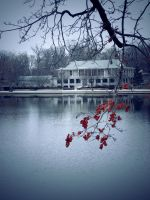 winter.at.shakespeare.pond by sarah-marley
