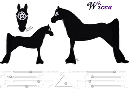 Wicca Ref. by Cerulean-Sky-Stables