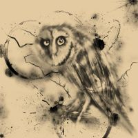 inky owl by L-A-Addams-Art