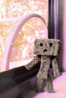 Not Another Danbo Picture by Leo-tux