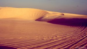 Desktop_Sand dunes_by JZ by Lonely-X