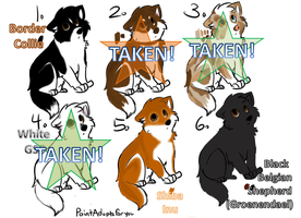--OPEN--1 LEFT!! Point Adoptables! by AixaRawr