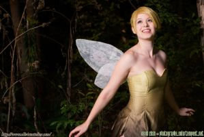 Pixie Hollow by Olivias-Atelier