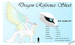 Woolf - Dragon Reference Sheet by patbunNF