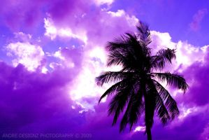 purple sky by AndredesignZ