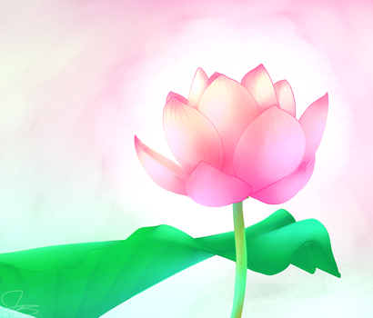 Lotus by MusicStar123