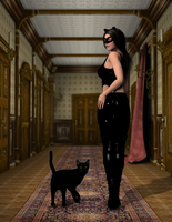 Catwoman by DRWolfe