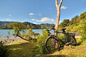 Cycling New Zealand by drewhoshkiw