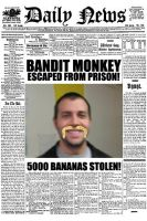 The Wanted conner monkey by killababe22