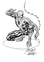Spidey - Allauch 2011 by SpiderGuile