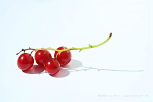 red currants by KiwisaftDEsign