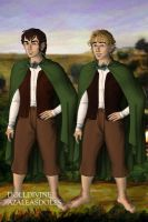 Frodo and Sam by Kailie2122