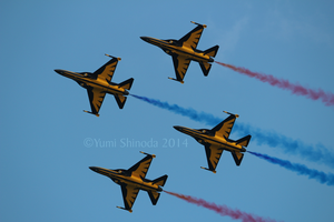 Black Eagles - Snake Roll by yumithespotter