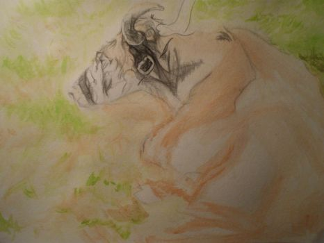 Yak in progress by magicalaurie