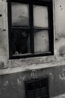 Man at the window by Dionisic