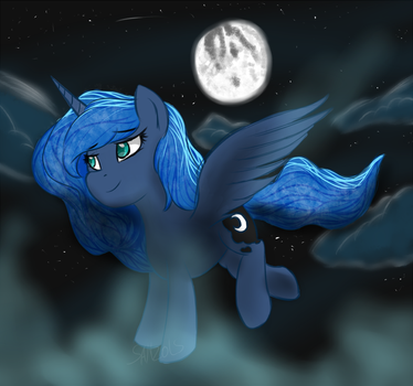 Flying in the Night by SanzoLS