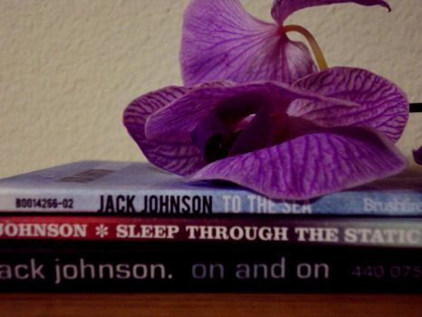 Jack Johnson CDs by banpaia-kami