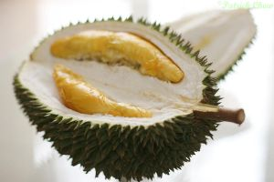 Durian 2 by patchow