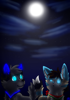 Night sky by SaraTheDog848