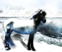 Beqanna: Charger by legendpendragon9