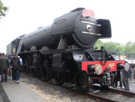 Black Flying Scotsman at Railfest 2012 by rlkitterman