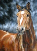 Horse - oil on canvas by AndreaSchepisi