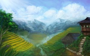 Rice Terraces by phomax