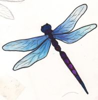 Blue and purple Dragonfly tat2 by happyhippybassist