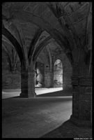 Dunfermline Palace Catacombs 4 by SCM