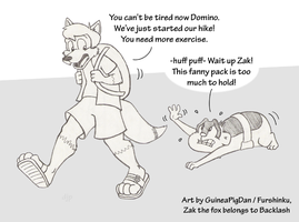 Domino and Zak go hiking by GuineaPigDan