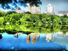 Central Park view by Insanemoe
