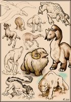 Star Wars beast sketches by Rinter
