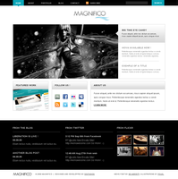 Magnifico Light - HTMLTheme by ddwebstudios