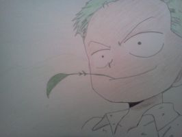 Young Zoro by Cam-san
