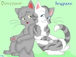 Dovepaw Ivypaw sisters by 02wildmixy07