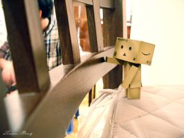 Day 006: Danbo Eavesdropping by twong314