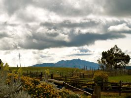 The High Paramo by volpe60610
