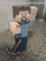 3D Guy from Minecraft 2 by PixelSculptures