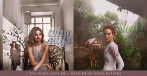 2 Big Icons Love Me Hate Me by shad-designs