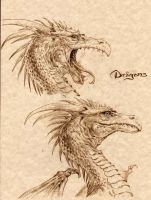Dragons Head study by Katase6626