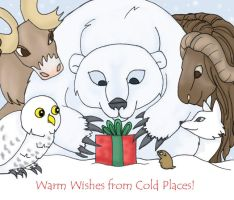 warm wishes from cold places by hermitchild