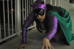 Catwoman - On The Prowl by seethroughcrew