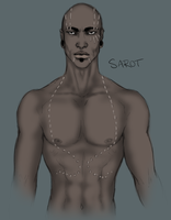 Sarot Redux by Incubo-Infinito