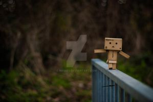 Danbo's First Steps by mamb0