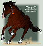 Mustang Mare Adoption 2 by JNFerrigno
